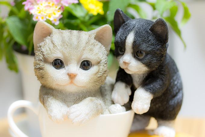 超可愛いレジン製のティーカップ子猫