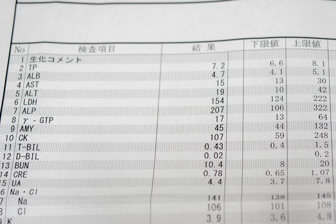 管理人hiroaの血液検査結果